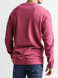 Tommy Collegenser 7235587_JEAN PAUL_TOMMY SWEAT_BACK_L_MXD_Tommy Collegenser MXD.jpg_